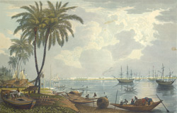 A View of Calcutta, from a point opposite to Kidderpore
